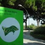 Itineraris brossians VI